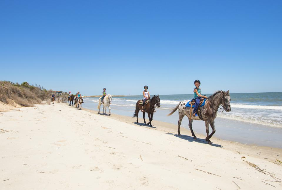 Young children riding horses on the beach