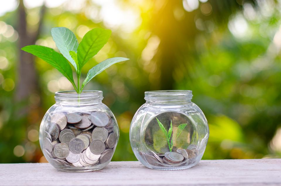 Coin tree Glass Jar Plant growing from coins outside the glass jar on blurred green natural background money saving and investment financial concept