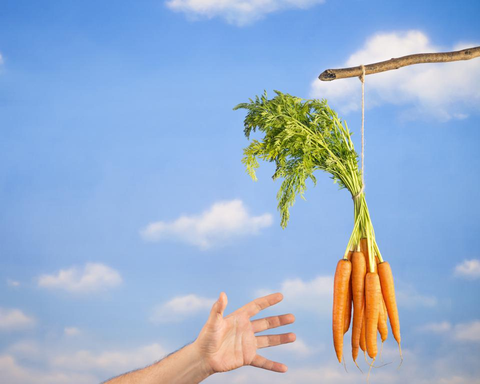 Hand reaching for Carrots attached to a stick