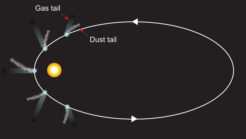Illustration of the directions that dust tails and ion tails present themselves in comets.
