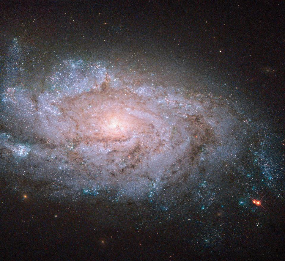 Spiral galaxy NGC 1084, as viewed by the Hubble Space telescope.