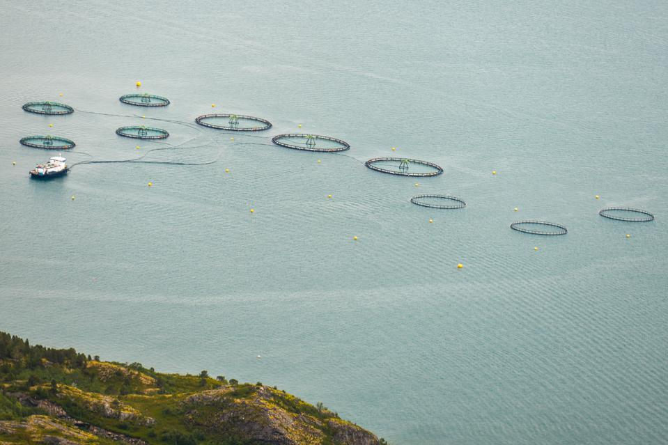salmon farm in Norway, aerial view