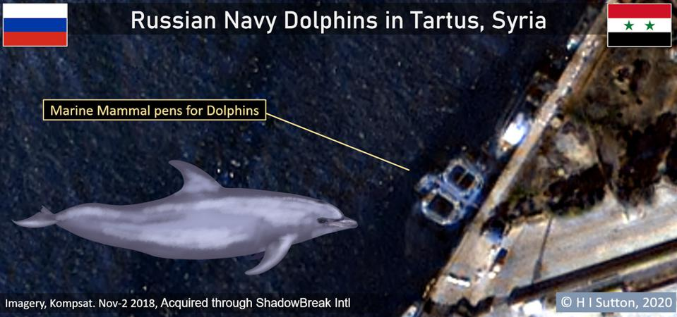 Satellite image of Russian Navy dolphin pens in Tartus, Syria