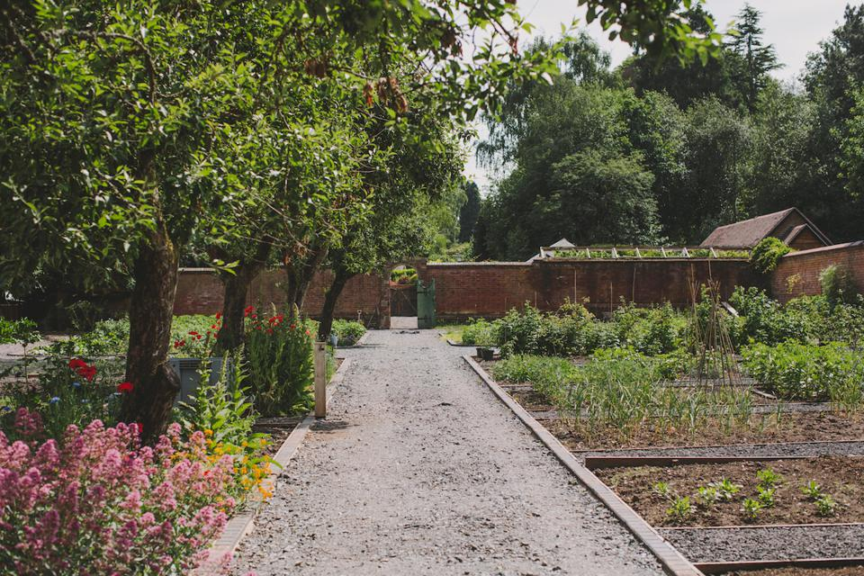 walled garden with flowers, trees and plants
