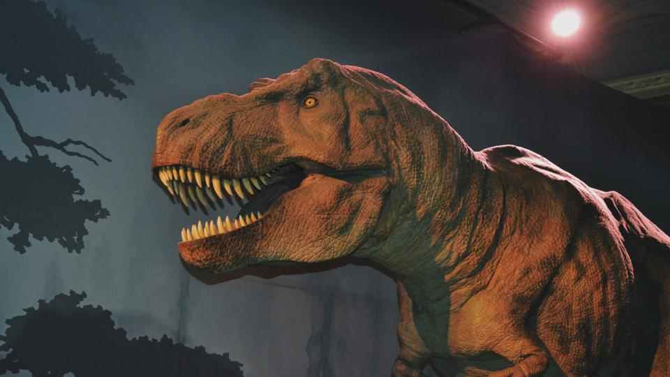 A T-Rex with