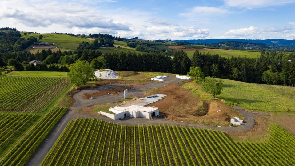 Bernau Estate Facility Under Construction and Surrounding Vineyard. June 2020