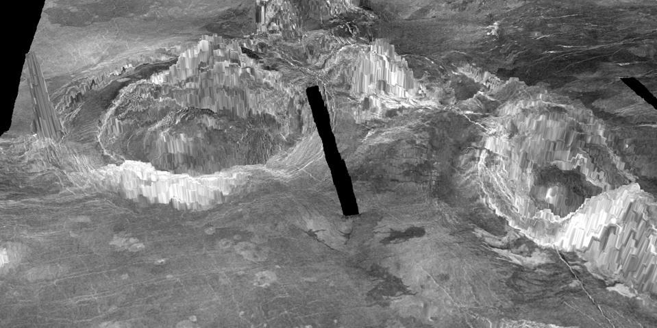 Venus coronae