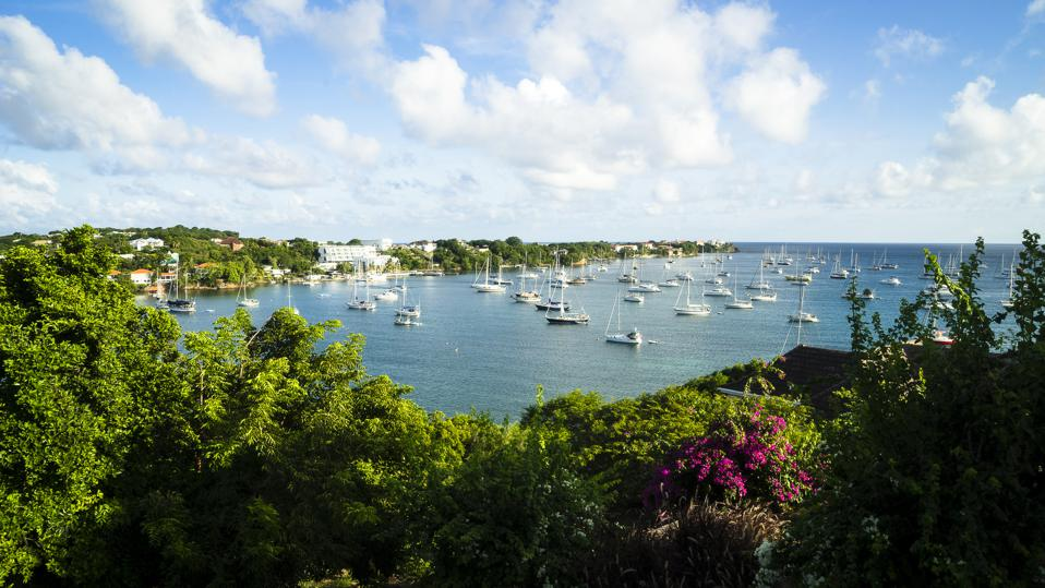 View Prickly Bay, Grenada, West Indies