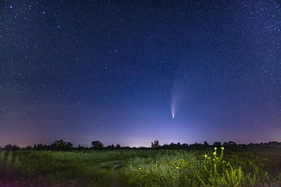 Cielo stellato con costellazione del grande merlo acquaiolo e cometa NEOWISE.