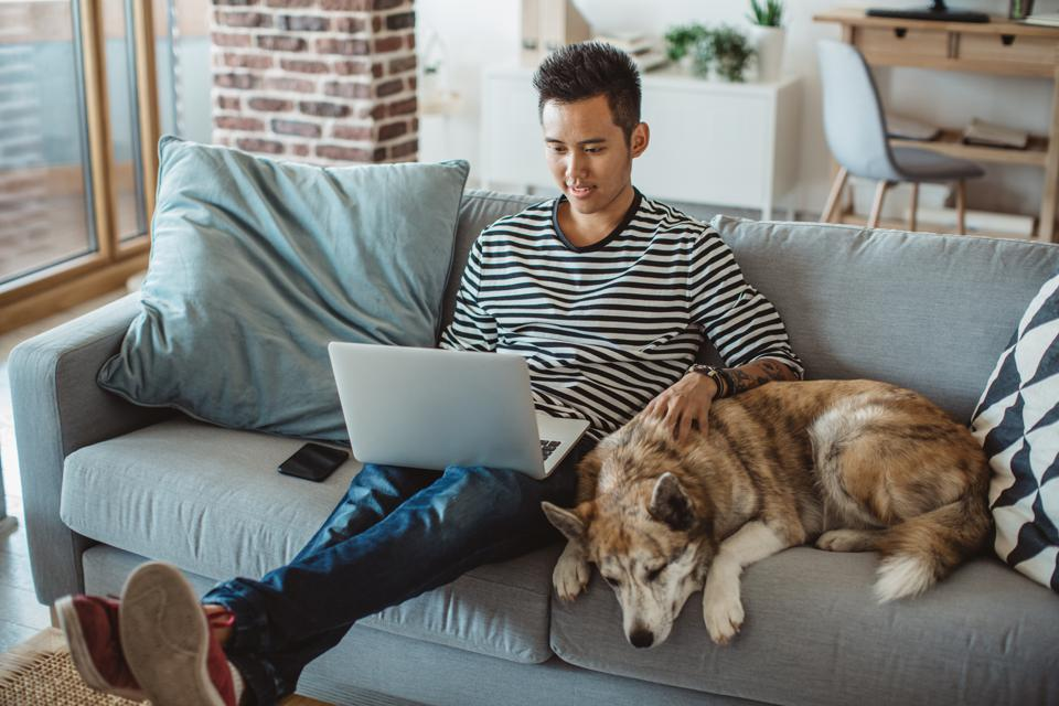 Young man sitting on the sofa and reading on a laptop with his  dog next to him