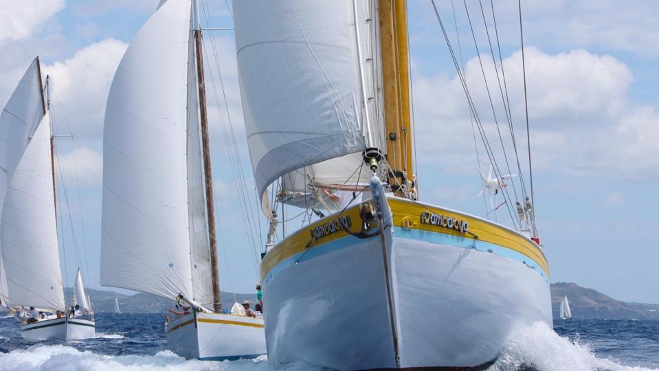 Savvy Sailing