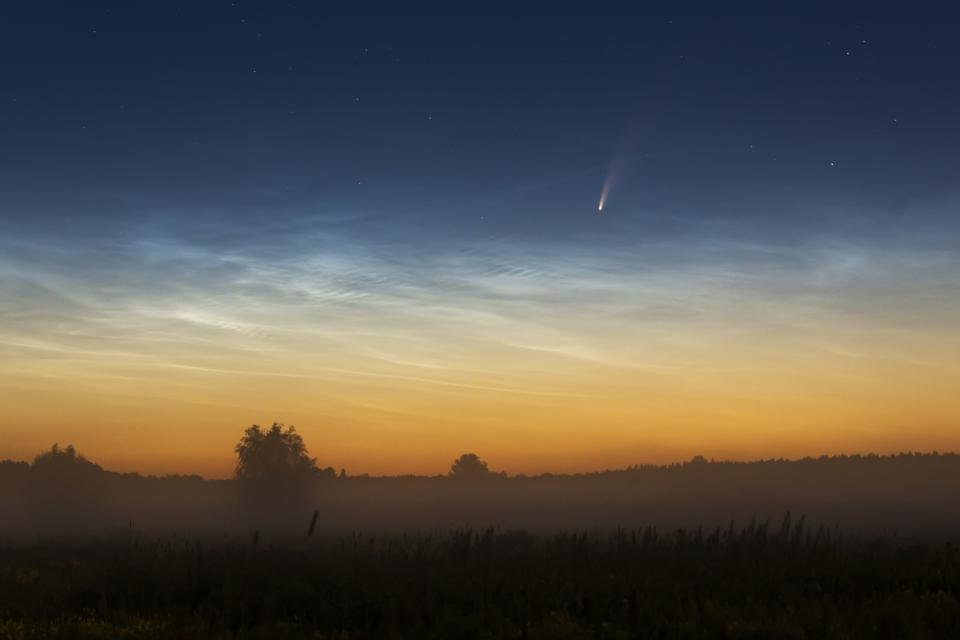 La cometa Neowise C / 2020 F3 all'alba nebbiosa con nuvole nottilucenti