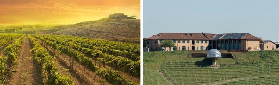 The World's Best Vineyards lists the top 50 wine tourism destinations in the world.