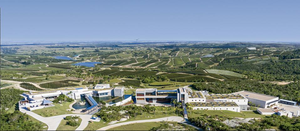 World's Best Vineyards is an annual list of the top 50 wine-tourism experience.