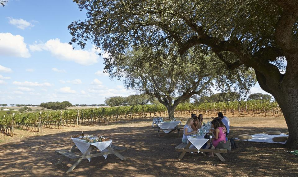 Herdade da Malhadinha Nova sets up beautiful picnics amid its vineyards in Portugal