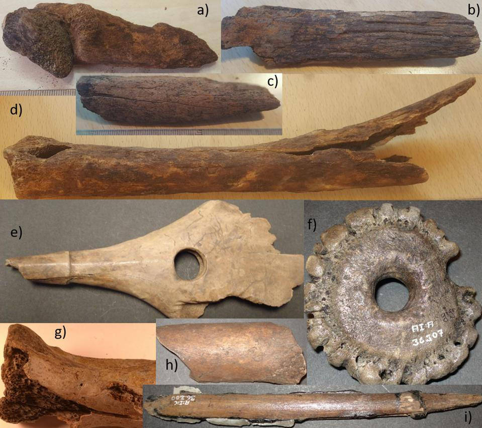 A selection of bone tools showing degradation.