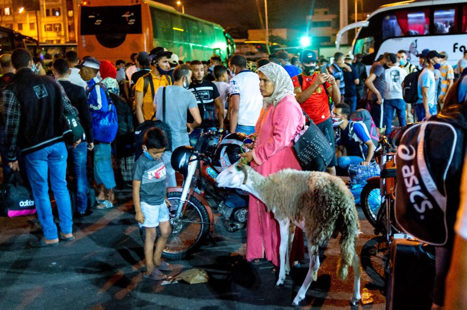 People and animals at bus station in Casablanca Morocco amid Covid outbreak