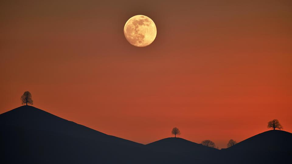 Double exposure, full moon before sunset with trees on moraine hill, Hirzel, Canton of Zurich, Switzerland