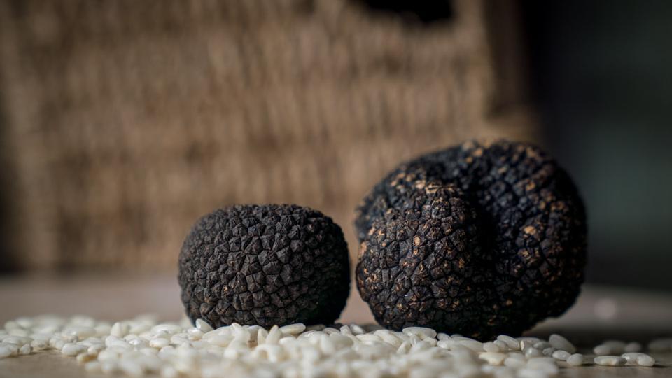 Black Truffles in their raw form