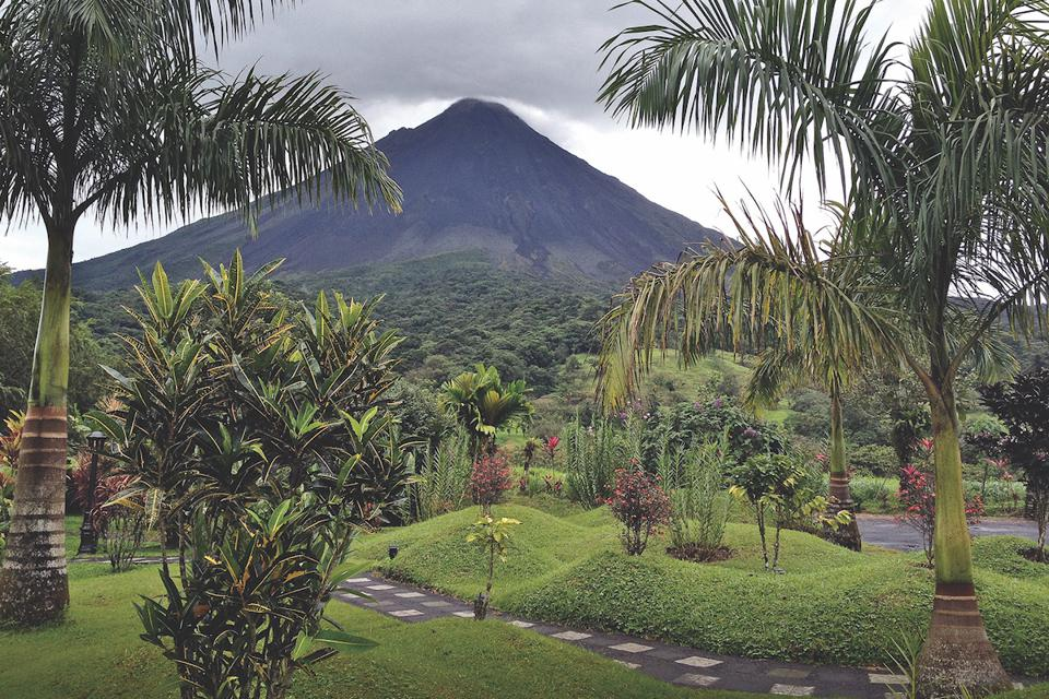 Volcano and palm trees in foreground