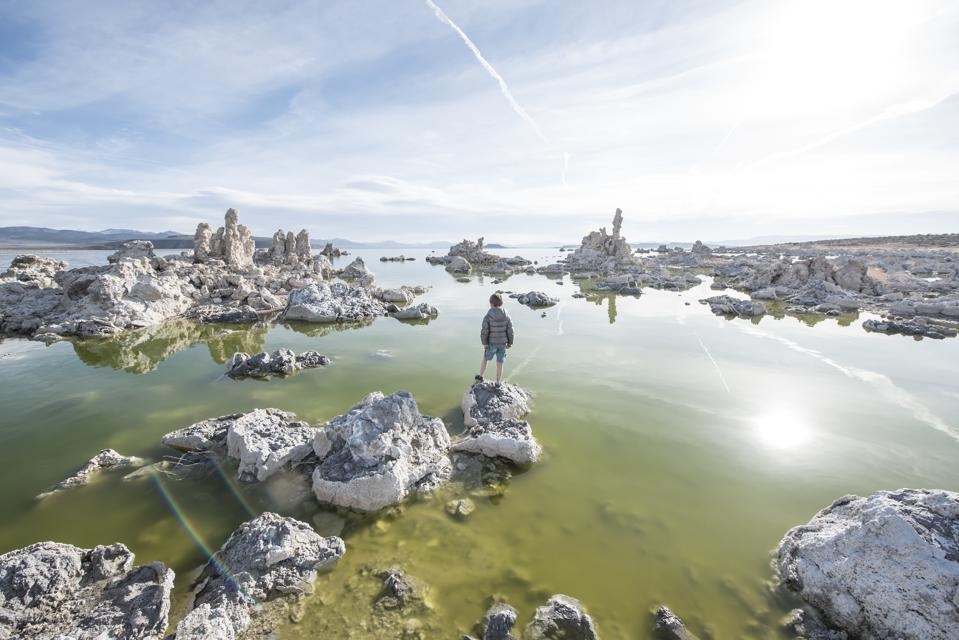 Rear view of boy standing on Mono Lake rocks in front of tufa towers, California, USA