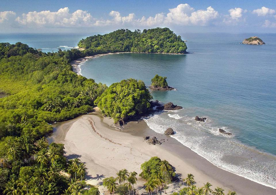 beach and sea and rainforest