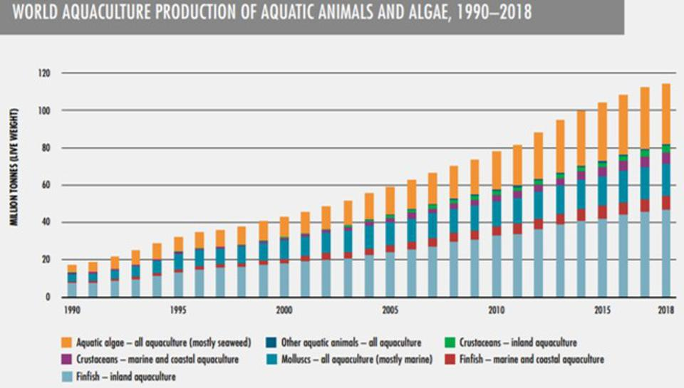Chart from FAO