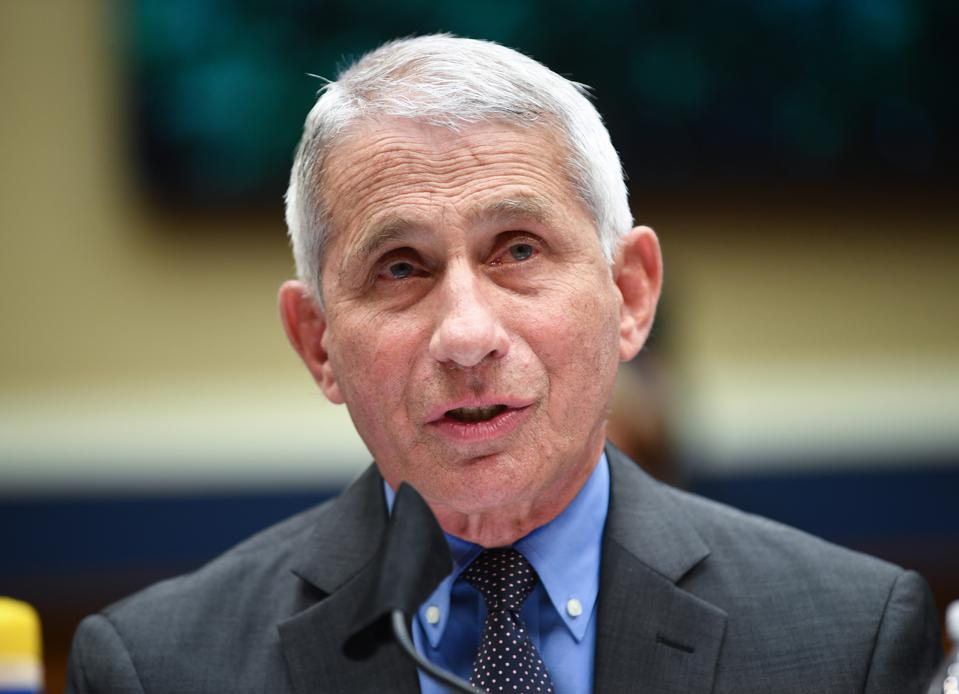 Dr. Anthony Fauci, director of NIAID, testifies before the US Senate.