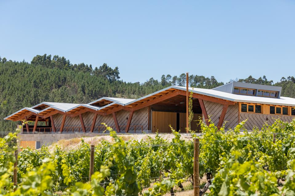 The winery at Taboadella in the Dão Region of Portugal has a contemporary design.