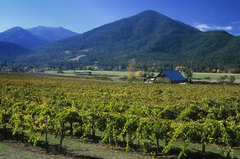 Valley View Vineyards in the Applegate Valley of Southern Oregon.. (Photo by: Greg Vaughn /VW PICS/Universal Images Group via Getty Images)