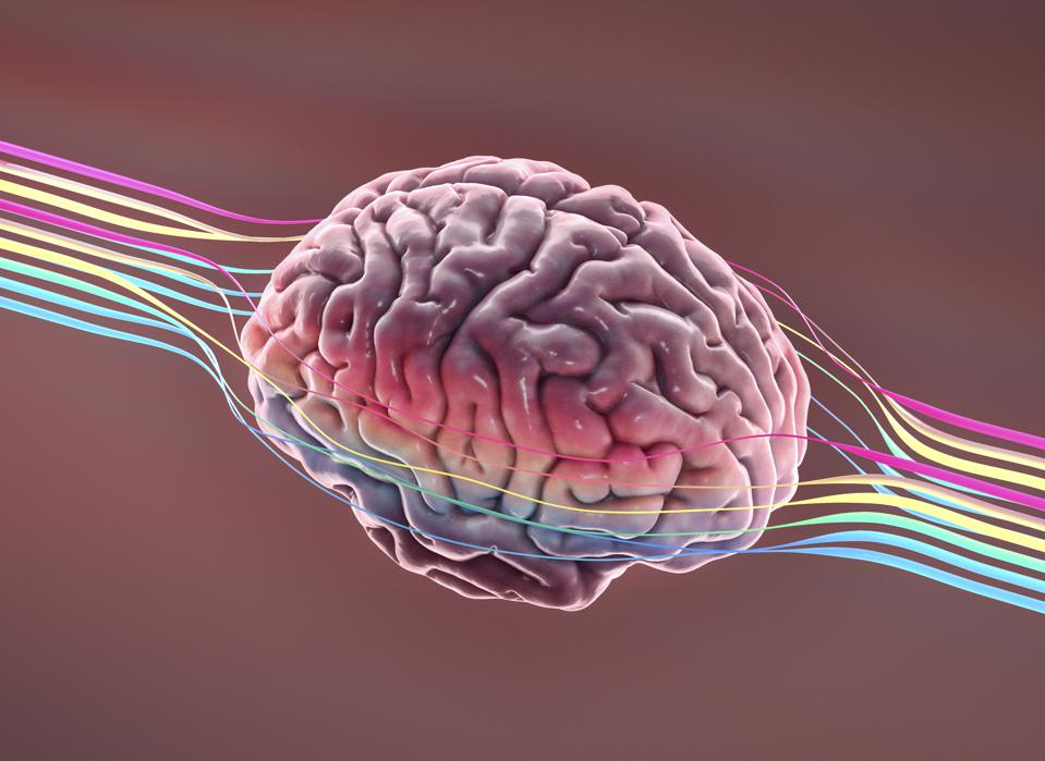 Brain with wires