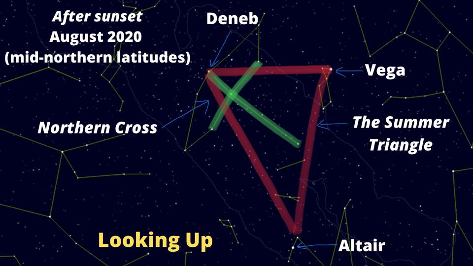 How to find The Northern Cross (green) and the Summer Triangle (red).