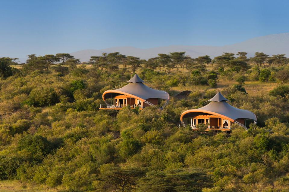 Two elaborate cone capped tents in the Masaai Mara in Kenya