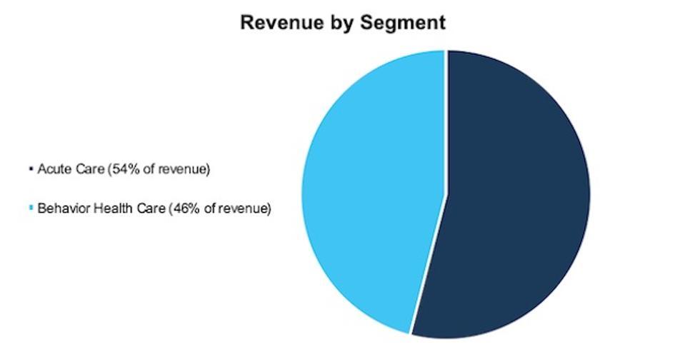 UHS Revenue by Segment