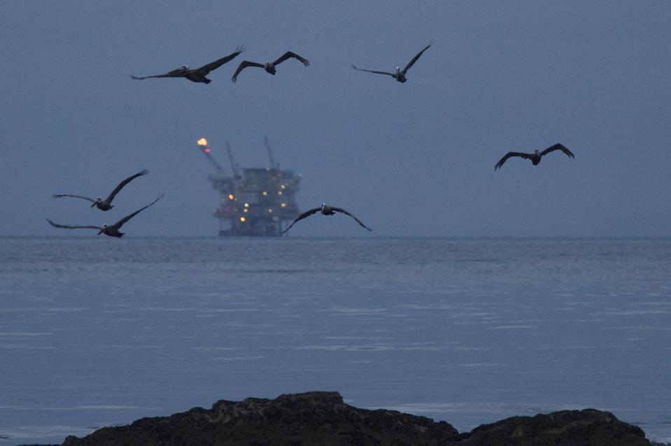 Ruptured Pipeline Spills Oil Along Santa Barbara Coast