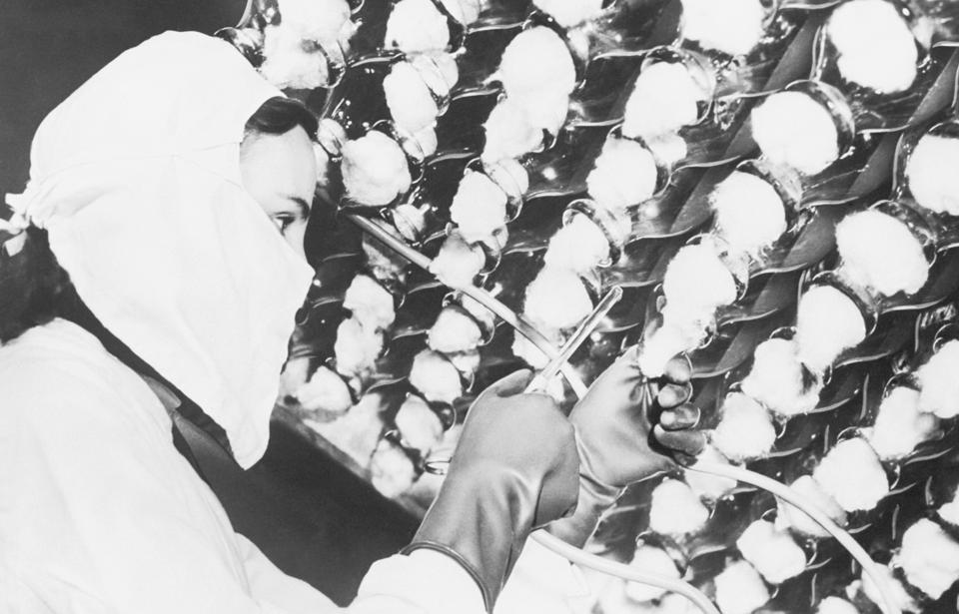 Woman Growing Penicillin