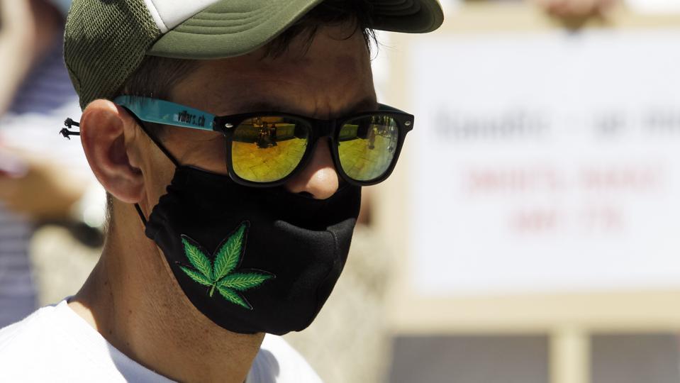 A protective mask with hemp leaf image...
