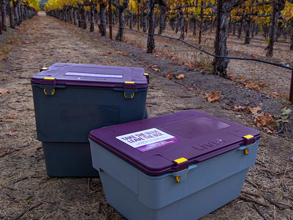 wine shipping, direct to consumer wine, reduce shipping waste