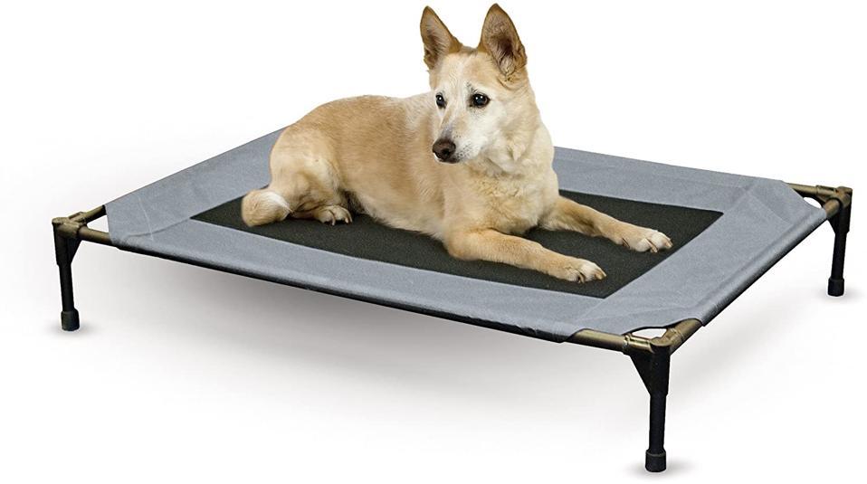 K&H Original Pet Cot Elevated Dog Bed