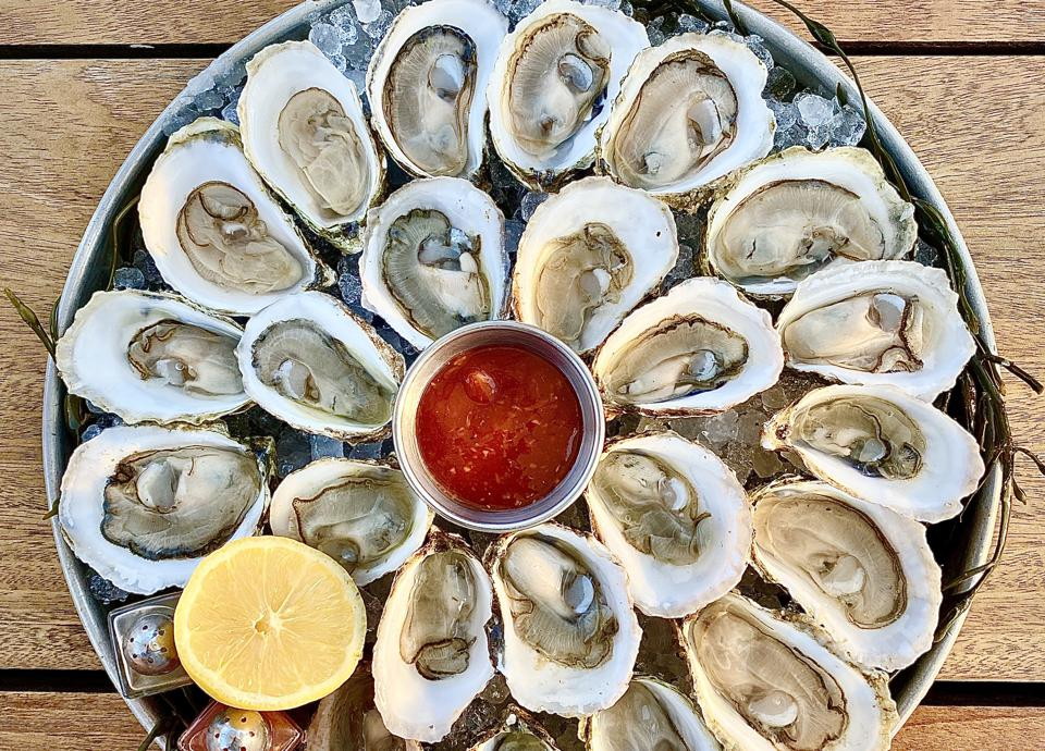 A platter of shucked oysters