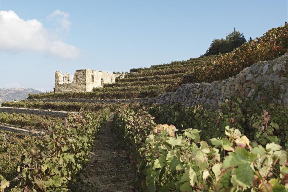 Jezzine vineyards, Lebanon