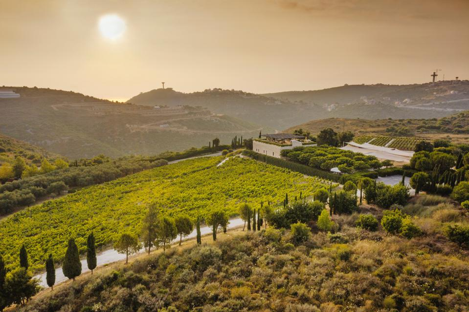 IXSIR winery in Basbina