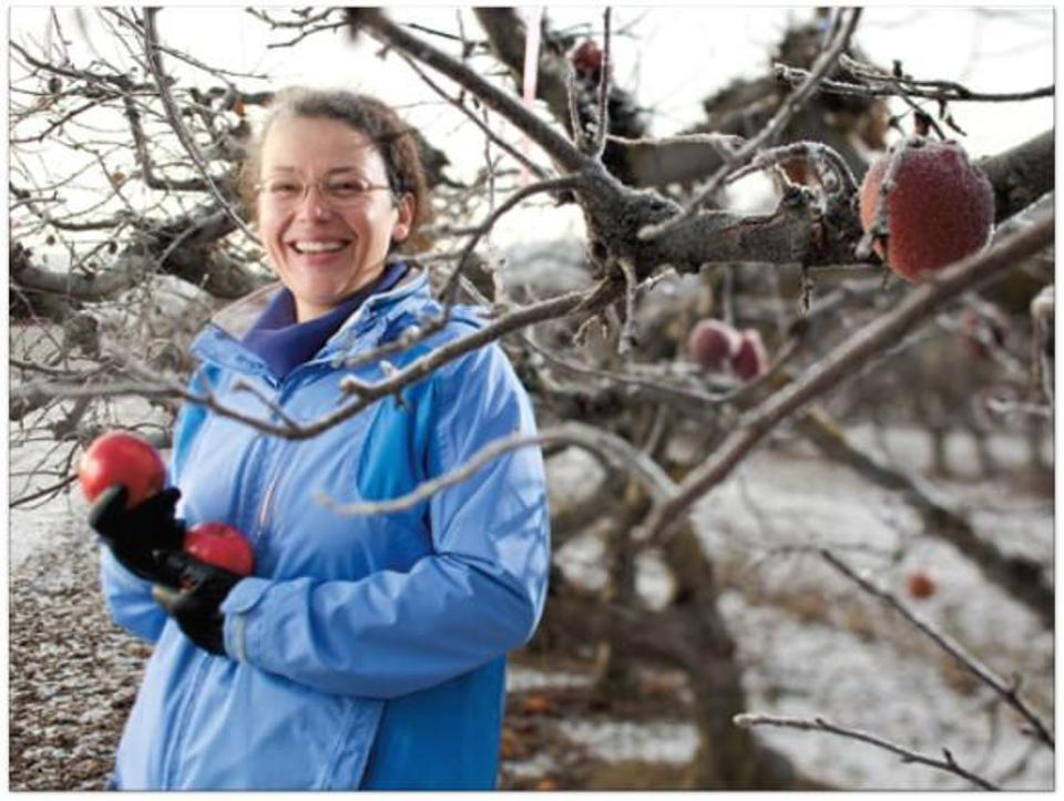 Kate Evans holds apples in a Washington orchard.