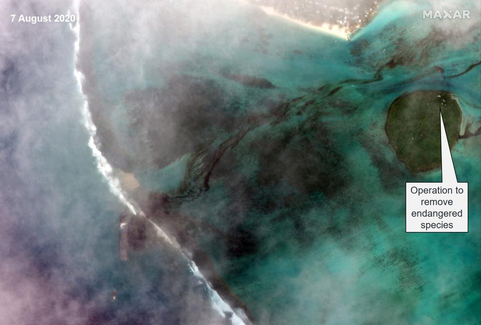 Friday 7th August 2020: a wider image shows the extent of the damage reaching the environmentally sensitive Ile aux Aigrettes (circular atoll), with operation to remove endangered species.