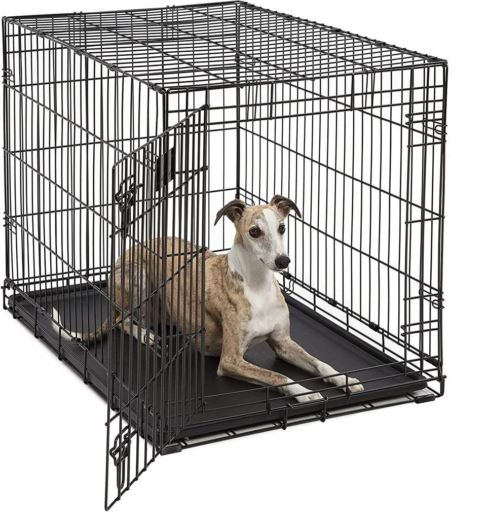 Life Stages Single Door Folding Crate for Intermediate Dogs