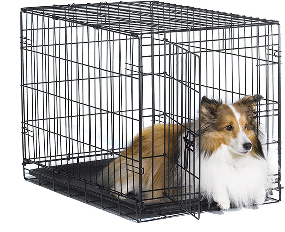 New World 30″ Folding Metal Dog Crate For Medium Dog Breeds
