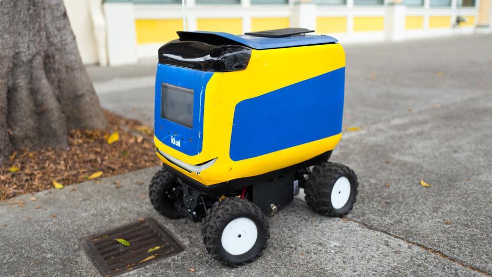 Kiwi Robot