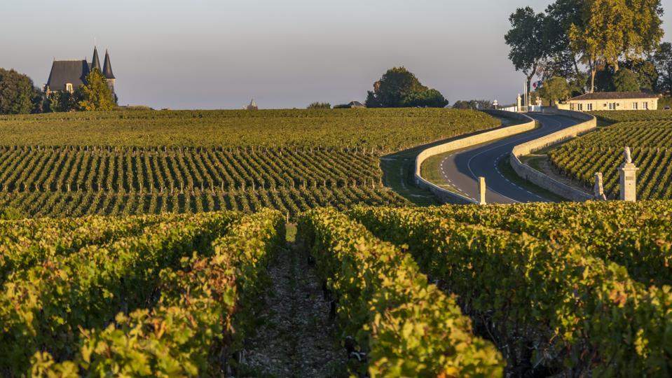 Route des Chateaux in Medoc, Bordeaux, France