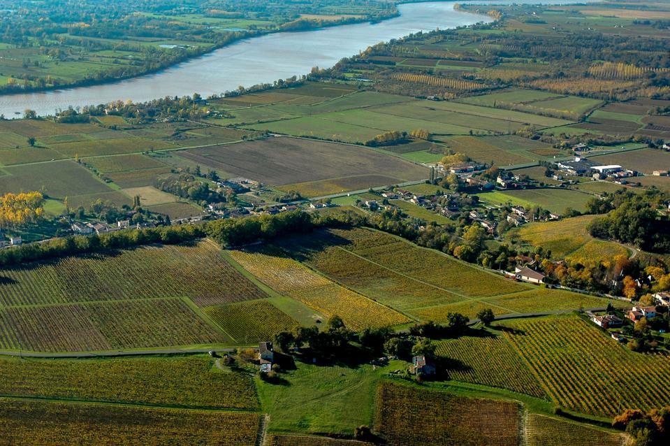 Aerial wiev Fronsac Vineyard landscape, Vineyard south west of France