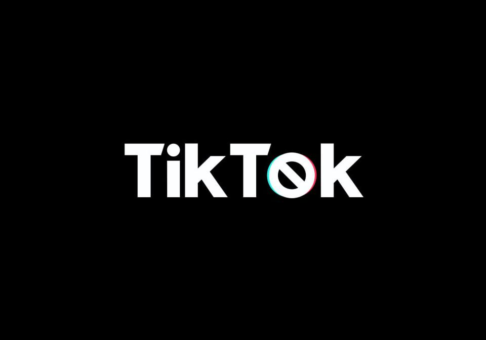 TikTok was recently ordered banned by President Trump within 45 days unless it is purchased by an American company.